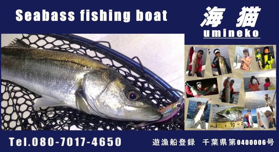 海猫(東京湾・千葉船橋)個人的にまた行きたいガイド船