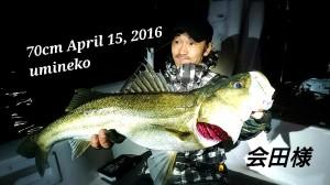 16-04-16-20-11-54-664_deco