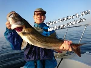 17-10-10-08-17-50-959_deco