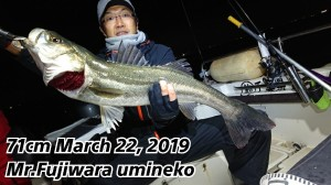 19-03-23-02-05-30-868_deco-300x168