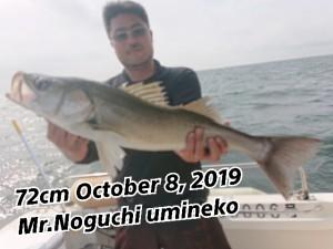 19-10-08-13-39-03-245_deco