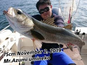 19-11-03-00-10-45-044_deco