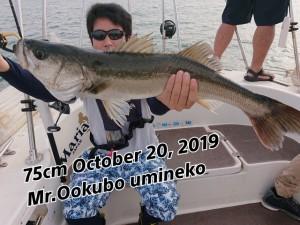 19-11-05-13-10-26-611_deco
