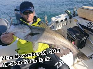 19-11-19-13-59-35-384_deco