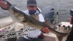 20-09-27-22-40-47-477_deco_copy_800x450