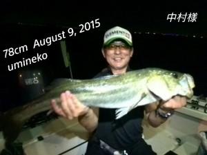 2015-08-26-10-46-07_deco