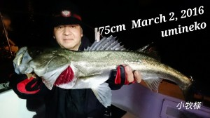 16-03-03-00-11-12-683_deco