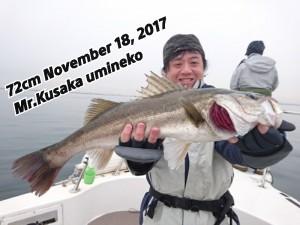 17-11-18-11-14-53-035_deco