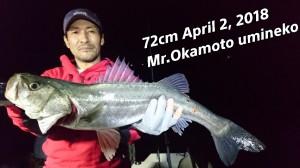 18-04-03-12-47-44-931_deco
