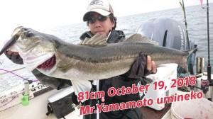 18-10-19-14-56-08-742_deco