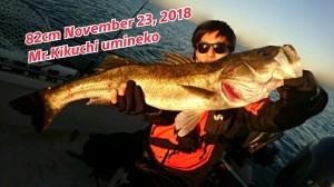 18-11-23-22-15-59-396_deco
