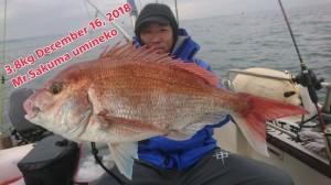 18-12-16-18-05-11-588_deco