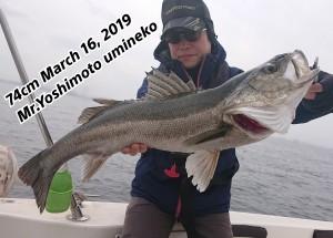 19-03-16-17-01-30-895_deco