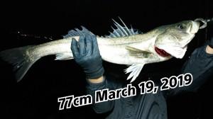 19-03-19-23-55-38-614_deco