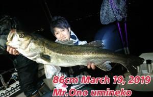 19-03-19-23-59-00-452_deco