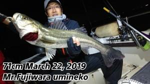 19-03-23-02-05-30-868_deco