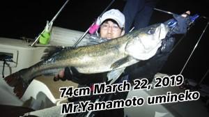 19-03-23-02-07-04-329_deco