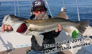 19-04-04-16-49-15-629_deco