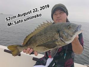 19-08-22-11-20-26-879_deco