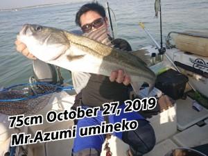 19-10-28-20-57-25-950_deco