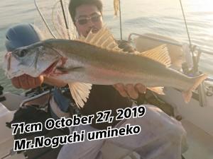 19-10-28-21-00-43-573_deco