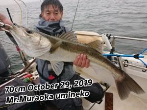 19-10-29-17-58-32-091_deco