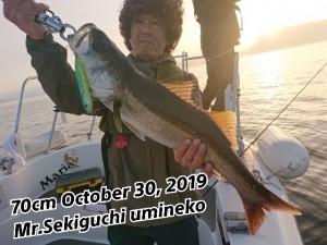 19-10-30-20-46-47-548_deco