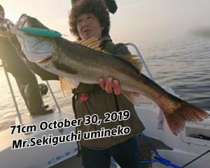 19-10-30-21-17-22-883_deco