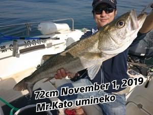 19-11-01-20-38-58-511_deco