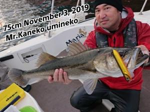 19-11-03-21-07-07-738_deco
