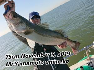 19-11-05-08-47-36-102_deco