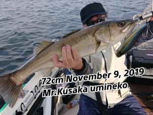 19-11-11-18-08-45-864_deco