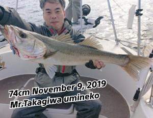 19-11-11-18-12-37-000_deco