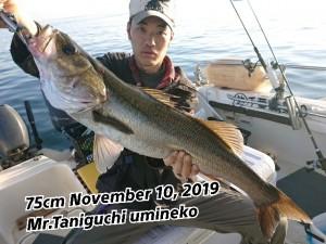 19-11-12-20-03-34-825_deco