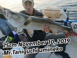 19-11-12-20-09-27-993_deco