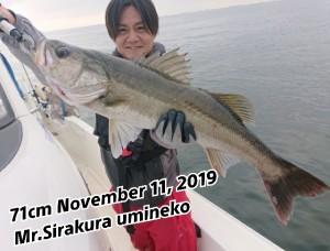 19-11-14-10-17-28-009_deco