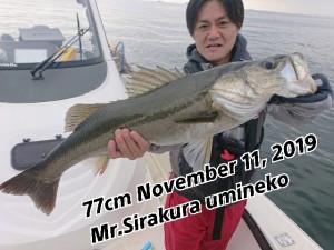 19-11-14-10-18-08-592_deco