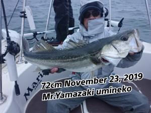 19-11-23-12-31-56-823_deco