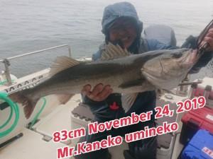 19-11-25-09-23-22-420_deco