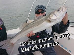 19-12-02-10-25-43-960_deco