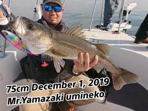 19-12-02-11-13-31-380_deco
