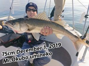 19-12-02-11-16-15-919_deco