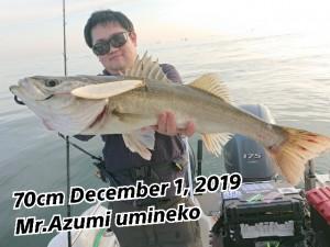 19-12-02-11-18-26-419_deco