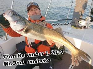 19-12-02-11-19-26-616_deco