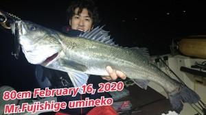 20-02-16-02-20-07-547_deco