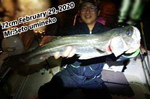 20-02-29-02-27-42-898_deco