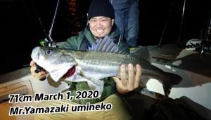 20-03-01-18-40-14-458_deco