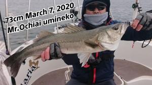 20-03-07-12-40-32-321_deco