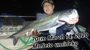 20-03-14-02-16-22-722_deco_copy_800x450