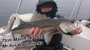 20-03-15-19-42-43-286_deco